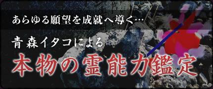 梓弓 イタコの選び方
